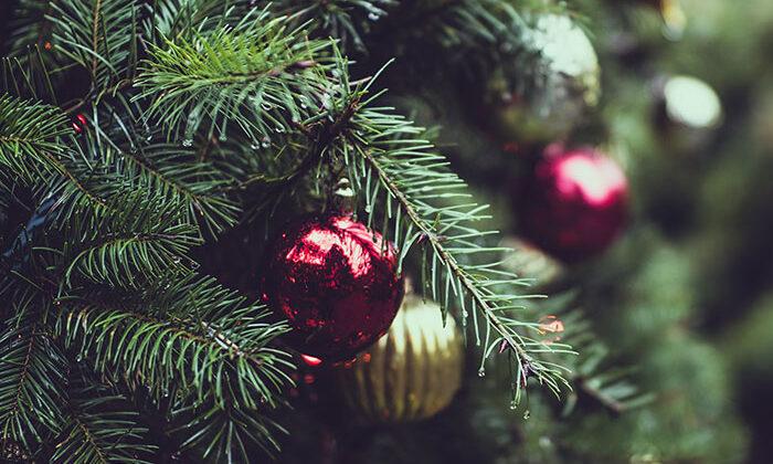 Fröhliche Weihnachten